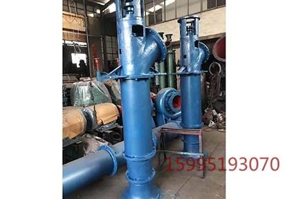 武汉立式轴流泵